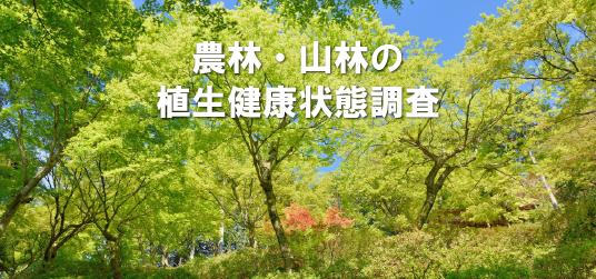 農林・山林の植生健康状態調査